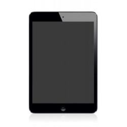 LCD WITH TOUCH SCREEN FOR IPAD MINI 5 (ORIGINAL)